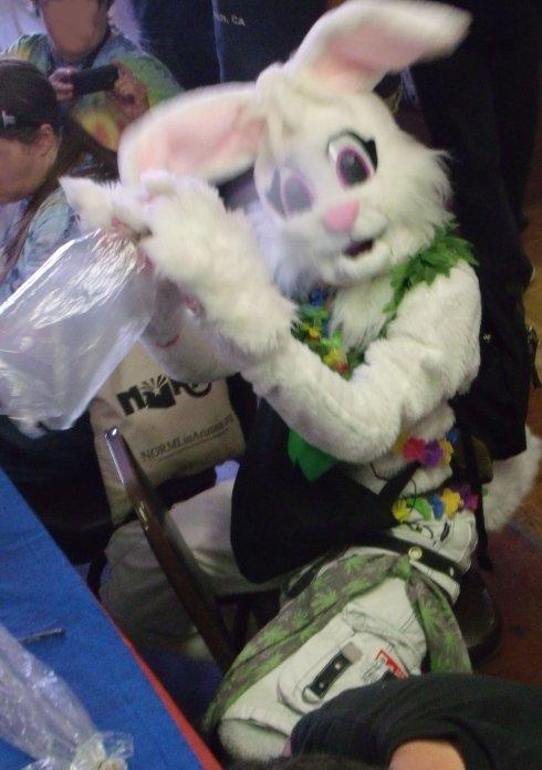 VApe Bunny